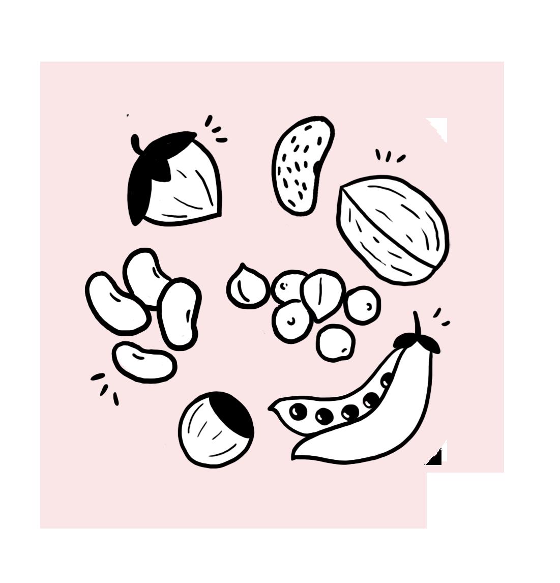 proteines_vegetales_bebe